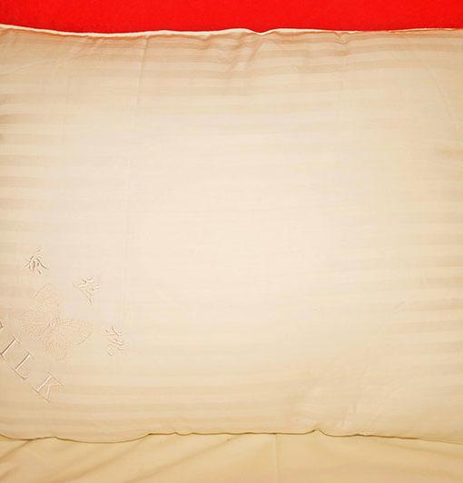 Silk Pillow or Hypoallergenic Pillows